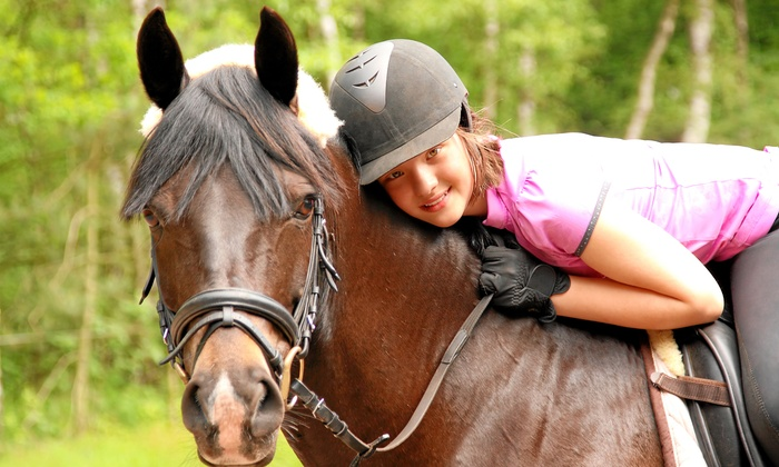 J & S Performance Horses - Middleburg-Clay Hill: $60 for $75 Worth of Services — J & S Performance Horses