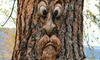 Old Man Tree Face Garden Art