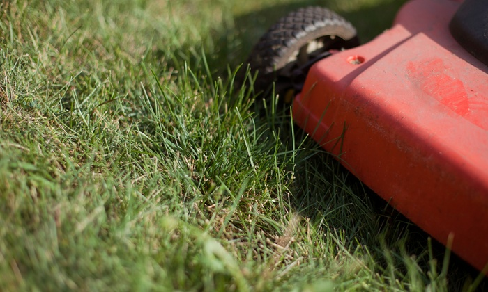 MC Lawn Service - Clarksville: One or Two Lawn Mowings, Blowings, and Trimmings for a Half Acre from MC Lawn Service (Up to 55% Off)