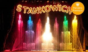 Circo Stankowich – Unidade Pink/Vermelha: Circo Stankowich – Tenda Pink – Av. Alcântara Machado: ingresso individual para cadeira central adulto