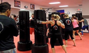 BC Kickboxing & BJJ: $19 for $90 Worth of Services — BC Kickboxing & BJJ