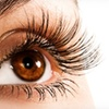 52% Off LASIK at Eye Care Specialists in Norwood