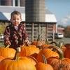Up to 53% Autumn Activities in Ballston Spa