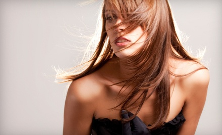 Haircut and Conditioner Treatment (an $80 total value) - Ziba Salon in Charleston