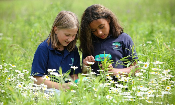 West Michigan Academy of Environmental Science - Walker: Summer Science Day Camp at West Michigan Academy of Environmental Science (50% Off). Five Options Available.