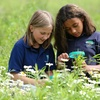 50% Off Summer Science Day Camps