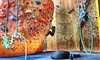 Up to 61% Off Pass at Nevada Climbing Center