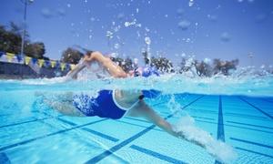 Aquarea: Ingresso in piscina e solarium con lettini e ombrellone fino a 10 persone da Aquarea (sconto 47%). Valido in 3 sedi