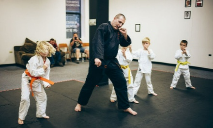 $39 for $130 Groupon  United Martial Arts Association of Bowling Green Ohio