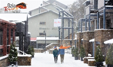 Sydney to Thredbo: One-Day Overnight Thredbo Snow Tour for One Person with Ozia Tours