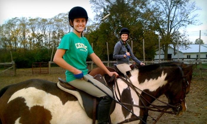 Bluegrass Polo Club - Lexington: $30 for a One-Hour Small-Group Polo Lesson at Bluegrass Polo Club ($65 Value)