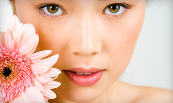Laser Dynamics Skin Care Center - Maxey Park: Laser Hair Removal from Underarms or Upper Lip at Laser Dynamics Skin Care Center