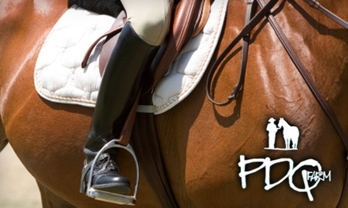PDQ Farm - Franklinton: $65 for Four One-Hour Horseback-Riding Lessons ($160 Value) or $19 for One One-Hour Lesson ($40 Value) at PDQ Farm in Franklinton