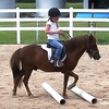 51% Off Two Horseback-Riding Lessons in High Ridge
