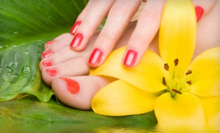 1 Classic Manicure and Pedicure (a $57 value) - Carmen Nicole's Wellness Spa in Park Ridge