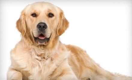 $60 Groupon to Fit 'N' Furry Pet Resort - Fit 'N' Furry Pet Resort in Petaluma