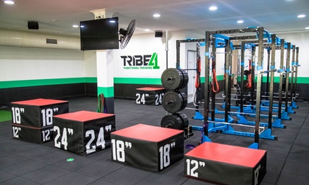 4 Weeks of Unlimited Functional Training Classes $19 or 2 People $35 at Tribe Functional Training, Wollongong