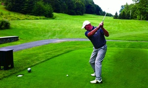 Fallon Golf: Two, Four, or Six Private Golf Training Sessions at Fallon Golf (Up to 56% Off)