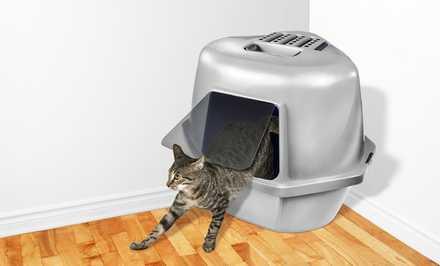 kitty cat door knockers