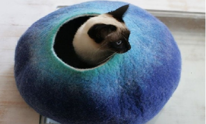 Cat Cave - Cats First Love - Short Pump: $65 for $118 Worth of Pet Bedding — Cat Cave - Cats First Love