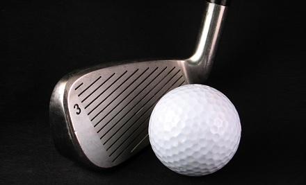 One VIP Membership (a $50 value) - The Quantum Golf & Vibrafit Studio in Sherwood Park