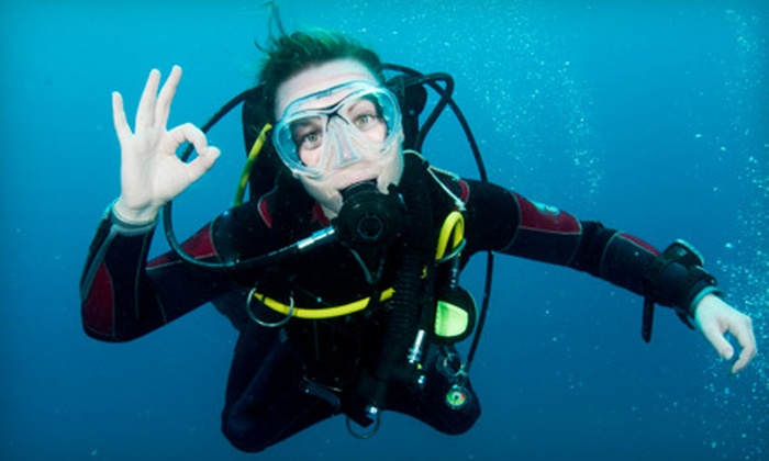 Explorer Diving - Kingston Mills: $12 for a Discover Scuba Class from Explorer Diving ($25 Value)