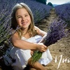 90% Off Photography Session and Prints