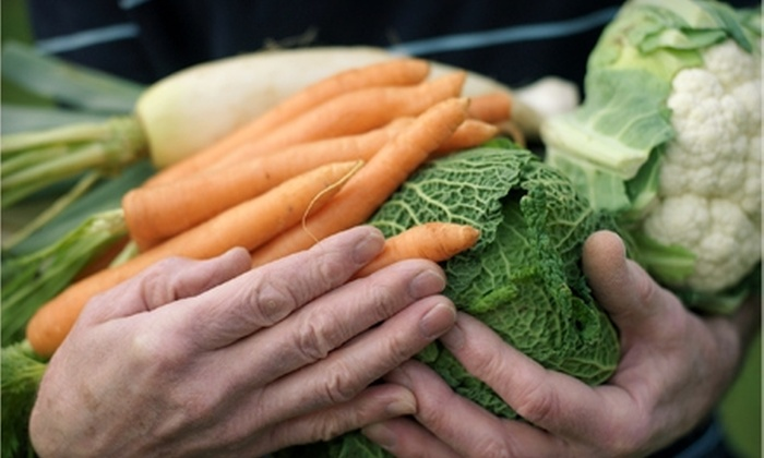 Organics of Naples: $27 for a One-Year Membership and Value Box of Organic Produce from Organics of Naples ($54.99 Value)