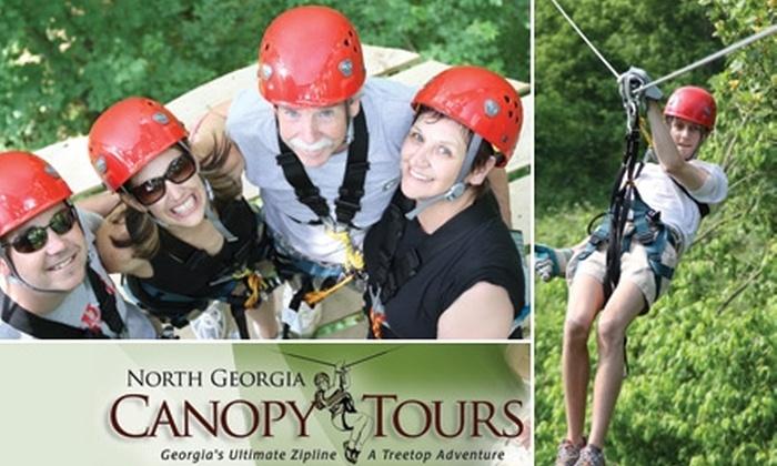 North Georgia Canopy Tours - Lula: $44 for a Treetop Adventure Tour with North Georgia Canopy Tours ($89 Value)