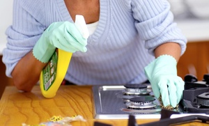 Best Cleaning NYC: $29 for $90 Worth of Services — Best Cleaning NYC