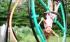 Adventure Promotions - Multiple Locations: Five Gyrosphere Rides or Gyrosphere Rental from Adventure Promotions