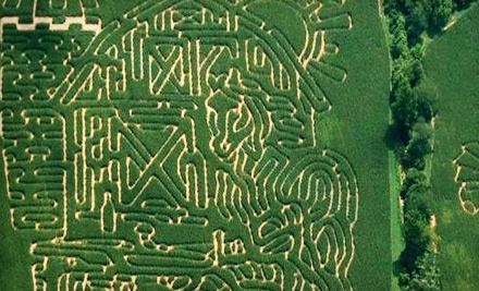 Adventure Acres Corn Maze: Corn-Maze Day for 2 (a $28 value) - Adventure Acres Corn Maze in Bellbrook