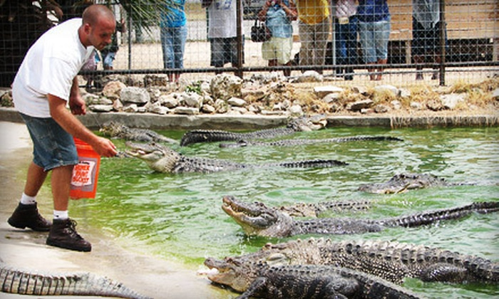 Animal World and Snake Farm Zoo - New Braunfels: Animal World and Snake Farm Zoo Outing for Two or Four in New Braunfels (54% Off)