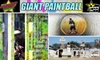 Giant Paintball Parks (SC Village, California Paintball Park, Giant Paintball Parks, Hollywood Sports Park) - Ramona: $20 for Full Day at Giant Paintball. Includes Gun, Mask & Air.