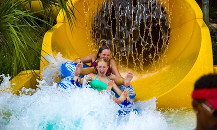 $29.99 for Single-Day Admission to Water Park at Big Kahuna's Water and Adventure Park ($47.99 Value)