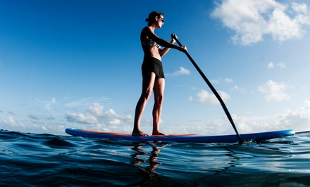 Surfing or Standup Paddleboarding Lesson for One or Two at Clint Carroll Surf School