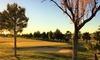 Campo de Golf Pablo Hernández - Campo de Golf Pablo Hernández: Green Fee de 18 hoyos para 2 desde 14,95 €  en Campo de Golf Pablo Hernández