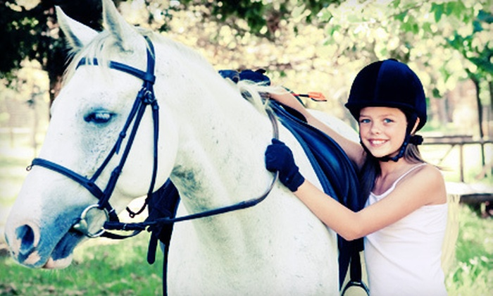 Summer Wind Stables - Chesterland: One, Three, or Five Horseback-Riding Lessons, One-Week Camp, or $10 for $20 Worth of Gifts at Summer Wind Stables in Chesterland