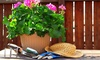 Flora-Tech Plantscapes, Inc. - Miami: $25 for $50 Worth of Services — Flora-Tech Plantscapes