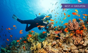 Al Mahara Diving Center: Introductory Scuba Diving Pool Session with Optional Beach Dive for Up to Four, Al Mahara Diving Center (Up to 61% Off)