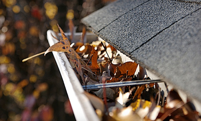 Aesthetics Cleaning - Downtown Kingston: Gutter Cleaning for a One- or Two-Storey House from Aesthetics Cleaning (Half Off)