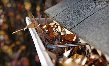 Gutter Cleaning for 1-Storey House (a $120 value) - Aesthetics Cleaning in