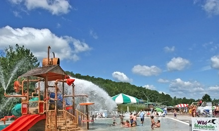 All-Day Access to Water Park, Go-Karts, and Alpine Slide for Two, Four, or Six at Wild Mountain (Up to 52% Off).