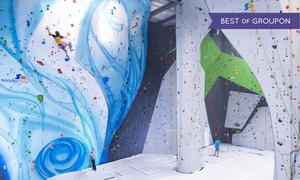 Sender One Climbing: Intro to Indoor Rock Climbing Class for One, Two, or Four at Sender One Climbing (Up to 50% Off)