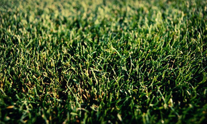 Good Nature Organic Lawn Care - Cleveland: Lawn-Beautification Services from Good Nature Organic Lawn Care (Up to 61% Off). Three Options Available.