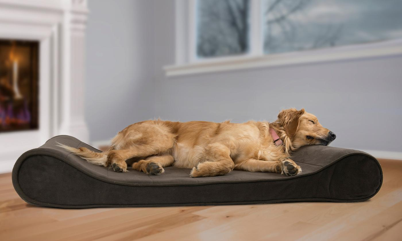 Save 80% on Orthopedic Contoured Pet Bed Lounger