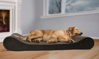 Orthopedic Contoured Pet Bed Lounger