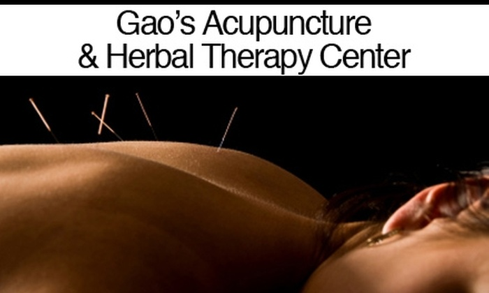 Gao's Acupuncture & Herbal Therapy Center - 9: $40 for a One-Hour Session Including Herbal & Acupuncture Consultation at Gao's Acupuncture & Herbal Therapy Center ($120 Value)