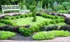 Arboretum State Botanical Garden of Kentucky - University of Kentucky: $12 for a One-Year, Individual Membership to The Arboretum, State Botanical Garden of Kentucky ($25 Value)