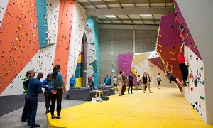 The Dublin Climbing Centre: Adult Guided Climbing Session for Up to Four at The Dublin Climbing Centre (Up to 70% Off)